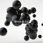 Kesar & CO